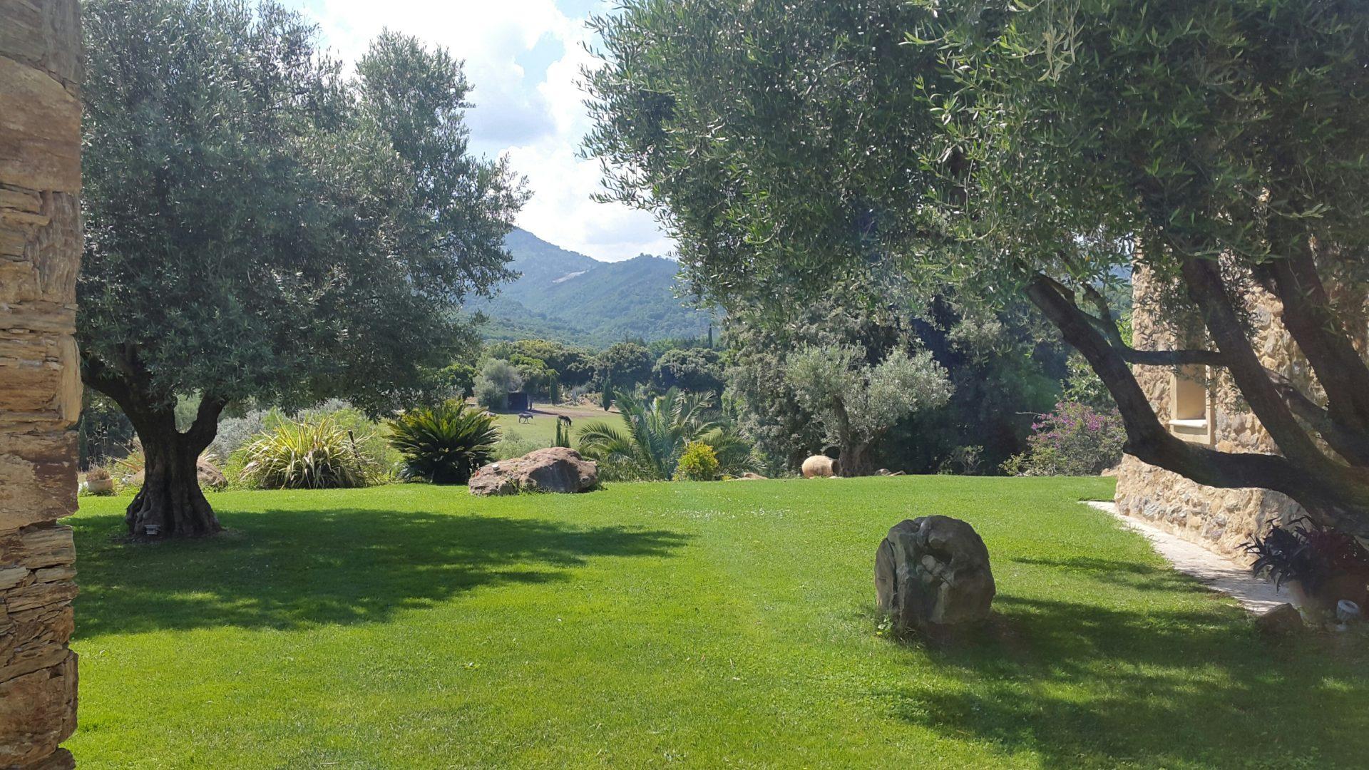 Ma Maison en Corse